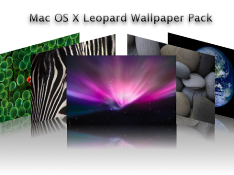 Leopard Wallpapers preview